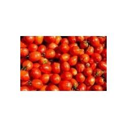 """Pomodoro per salsa """"Siccagno"""""""