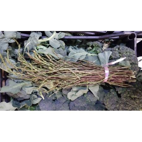 Asparagi nostrani (un mazzetto da GR 250)