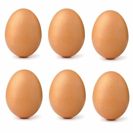 Uova confezione da 6