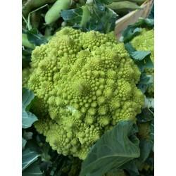 Cavolfiore verde bio (broccolo)